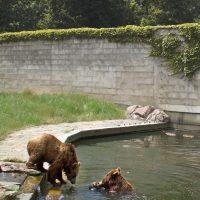 Tierpark Bernburg